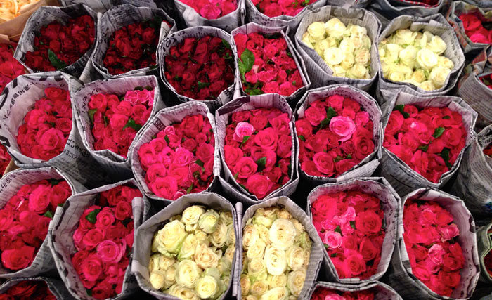 Розы - букет на 8 Марта, белые, розовые, красные, бордовые