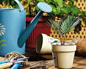 Азот фосфор и калий для растений