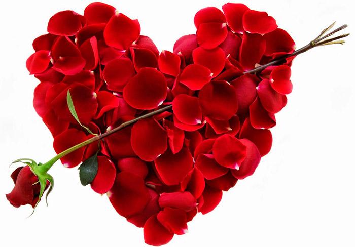 Цветок для любимой девушки